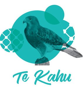 Te Kahu membership opportunity at The Kollective